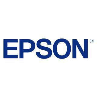 Epson Tinte 700ml light schwarz