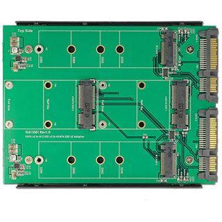 """Delock SATA Konverter 2x SATA 22Pin - 2x M.2/ 2x mSATA 3,5"""""""