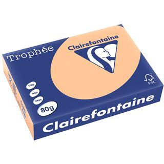 Clairefontaine Multifunktionspapier Troph'e, A4, 80 g/qm, aprikose