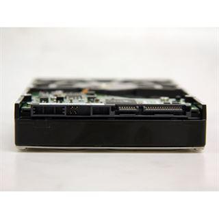 """1000GB Samsung Spinpoint F1 HD103UJ 32MB 3.5"""" (8.9cm) SATA 3Gb/s"""