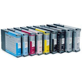 Epson Tinte C13T605100 schwarz photo