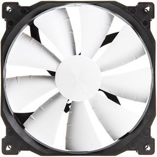 Phanteks PH-F140XP PWM Fan 140x140x25mm 600-1200 U/min 15-19 dB(A)